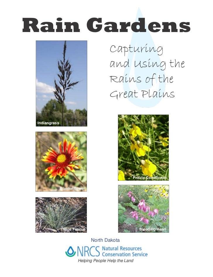 ND: Bismarck: Rain Garden Information Guide