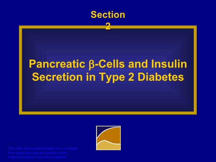 Section 2 Pancreatic   -Cells and Insulin Secretion in Type 2 Diabetes