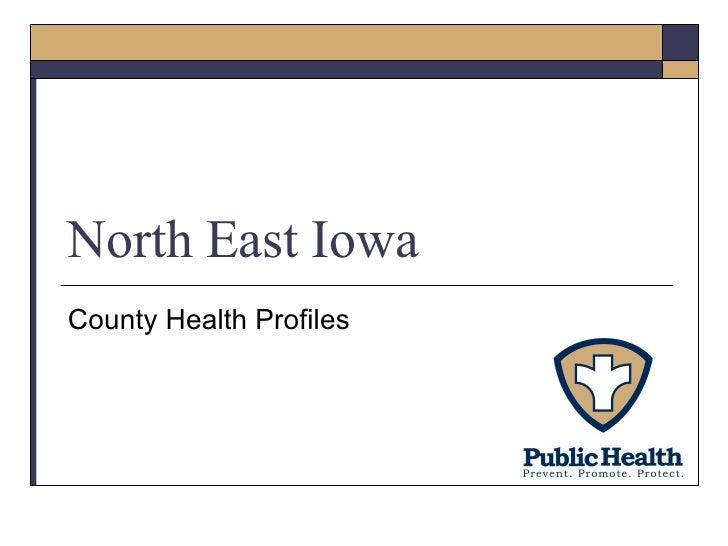 North East Iowa County Health Profiles