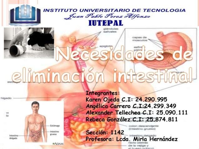 Integrantes: Karen Ojeda C.I: 24.290.995 Angélica Carrero C.I:24.299.349 Alexander Tellechea C.I: 25.090.111 Rebeca Gonzál...