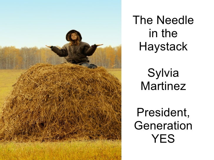 The Needle in the Haystack (old)