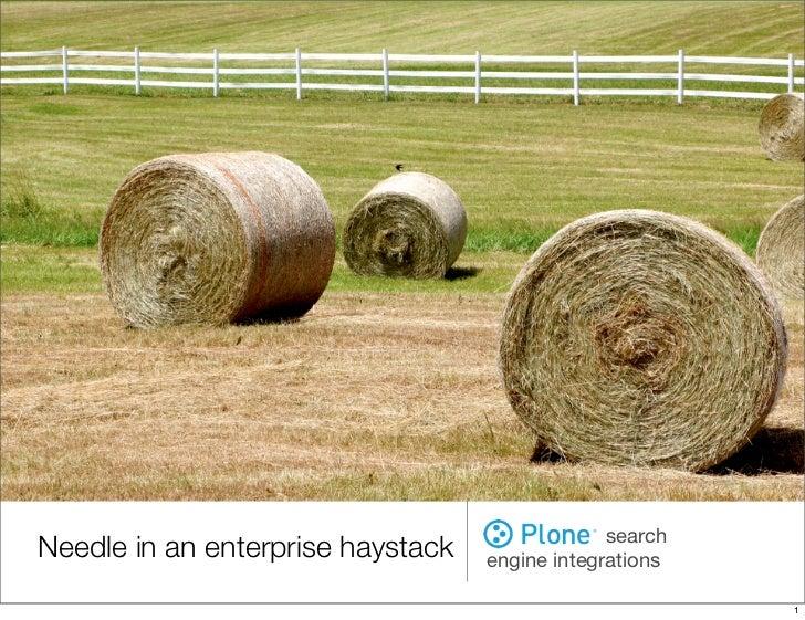 Needle in an enterprise haystack