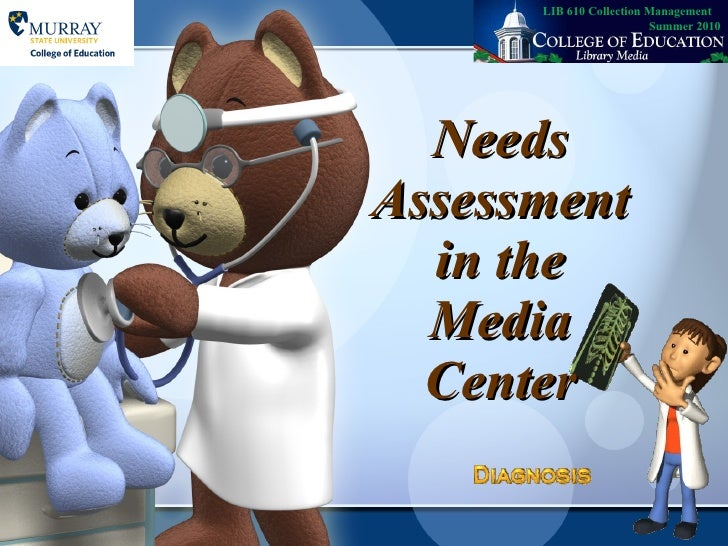 Needs assessment 2003 version