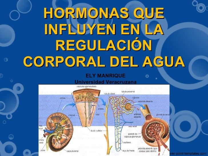 HORMONAS QUE INFLUYEN EN LA REGULACIÓN CORPORAL DEL AGUA ELY MANRIQUE Universidad Veracruzana