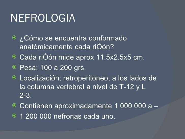 NEFROLOGIA <ul><li>¿Cómo se encuentra conformado anatómicamente cada riñón? </li></ul><ul><li>Cada riñón mide aprox 11.5x2...