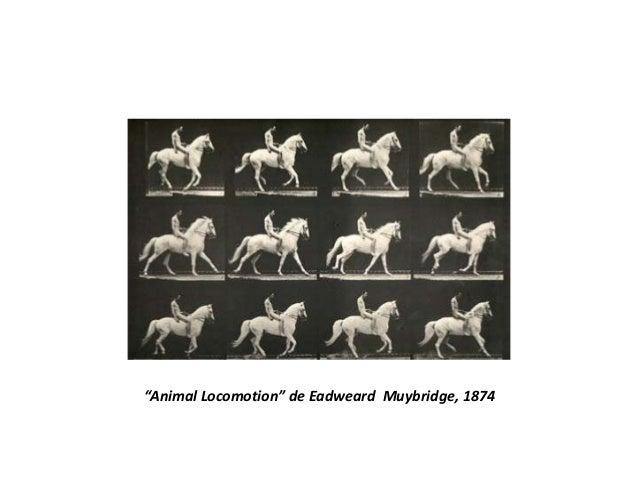 """""""Animal Locomotion"""" de Eadweard Muybridge, 1874"""