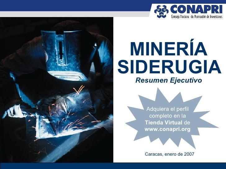 Negocios en Minería - Resumen Ejecutivo 2007