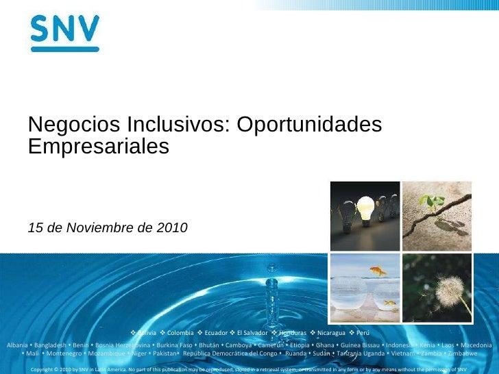 Negocios Inclusivos: Oportunidades Empresariales 15 de Noviembre de 2010