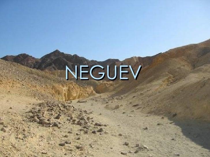 NEGUEV