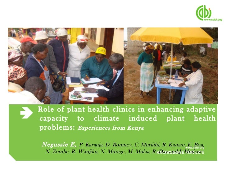 Negussie: Role of plant health clinics in enhancing adaptive capacity to climate induced plant health problems: Experiences from Kenya