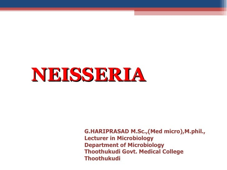 <ul><li>NEISSERIA </li></ul>G.HARIPRASAD M.Sc.,(Med micro),M.phil., Lecturer in Microbiology  Department of Microbiology  ...