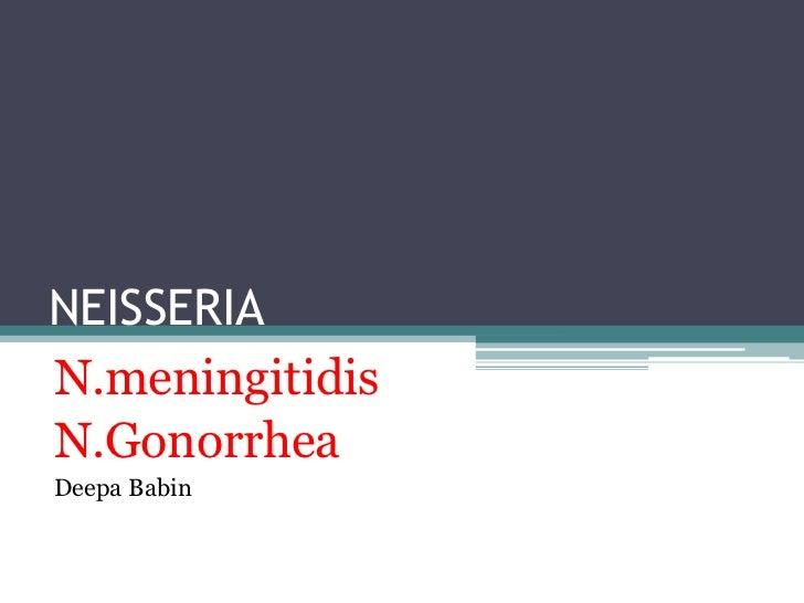 NEISSERIAN.meningitidisN.GonorrheaDeepa Babin