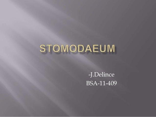 Stomodaeum of a nematode