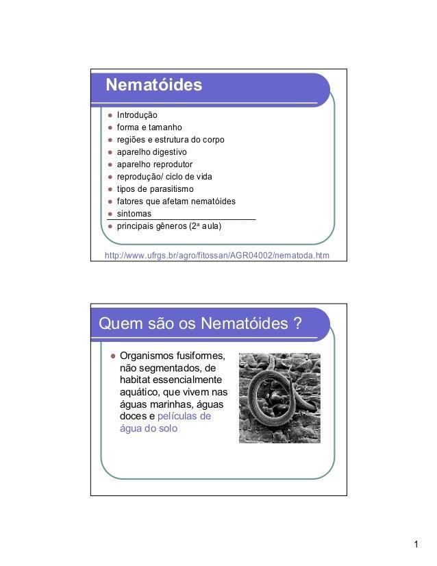 Nematóides   Introdução   forma e tamanho   regiões e estrutura do corpo   aparelho digestivo   aparelho reprodutor   repr...