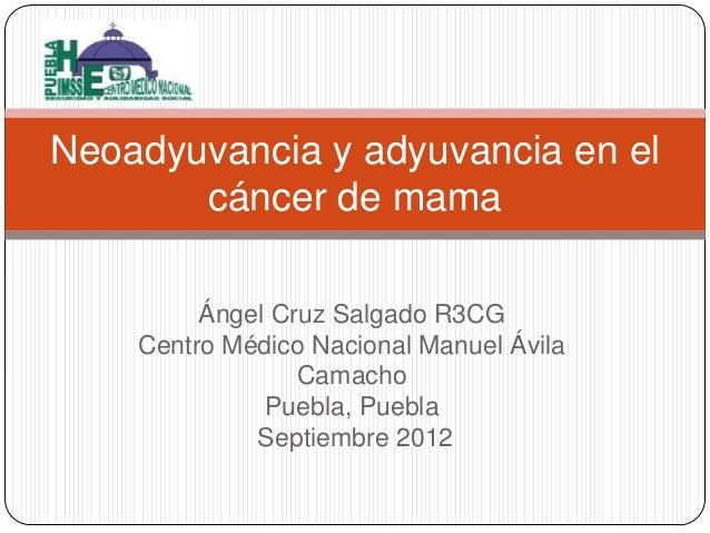 Neoadyuvancia y adyuvancia en el cáncer de mama