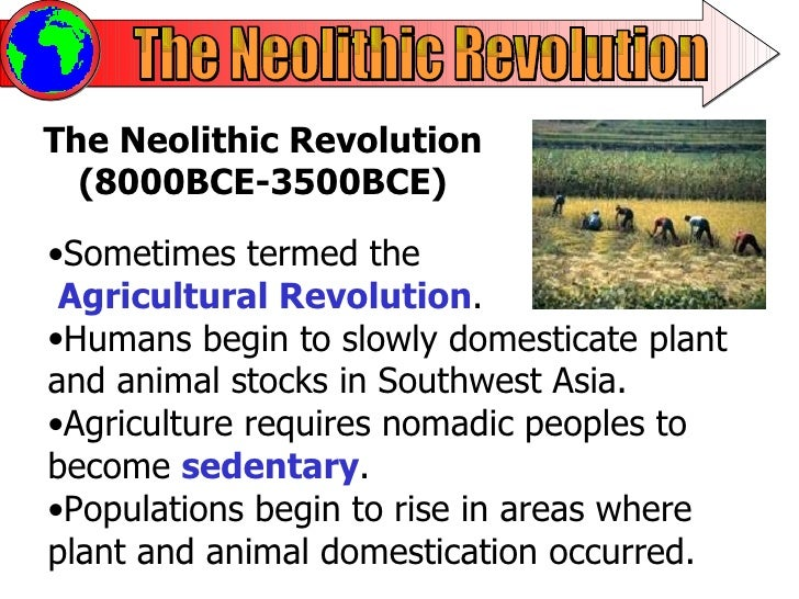 impact of the neolithic revolution essay