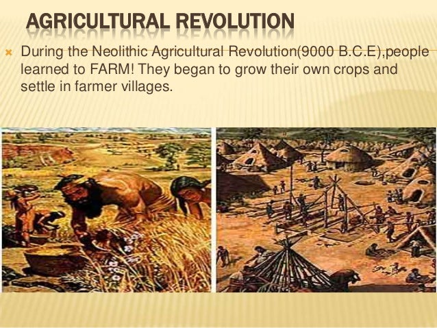 neolithic revolution and age of exploration The neolithic revolution happened at a time in world history when it was simply not possible to have any significant amount of trade in food between different parts of the world the neolithic revolution was the time in history in which agriculture first came about.