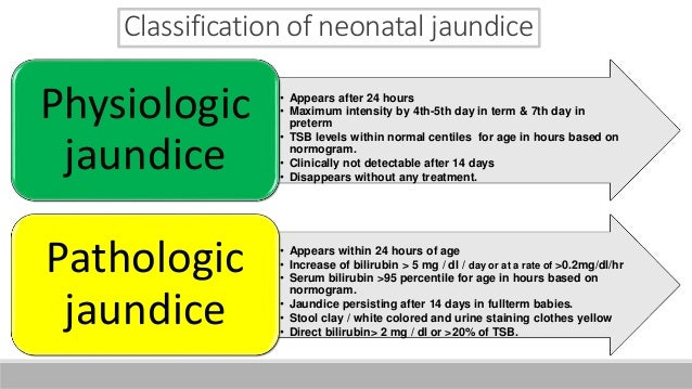 Neonatal jaundice final