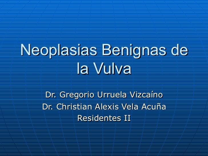 Neoplasias Benignas de la Vulva Dr. Gregorio Urruela Vizcaíno Dr. Christian Alexis Vela Acuña Residentes II