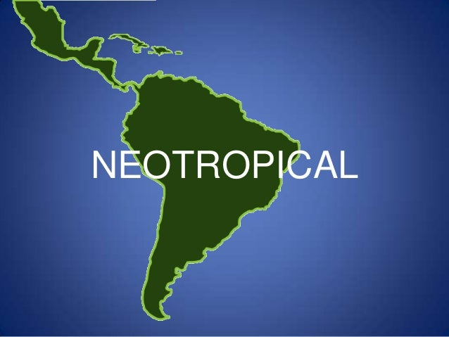 Neotropical ecozone