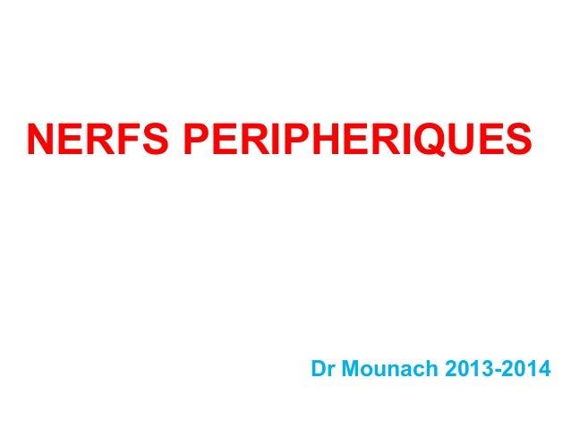 NERFS PERIPHERIQUES Dr Mounach 2013-2014
