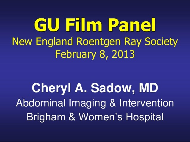 Nerrs gu film panel.feb 2013