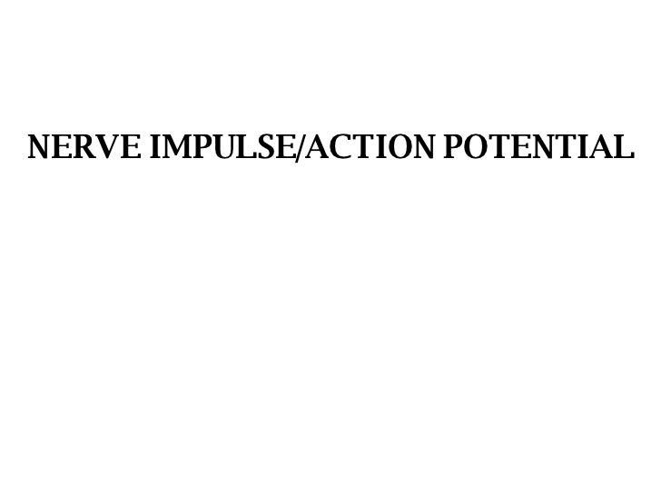 NERVE IMPULSE/ACTION POTENTIAL