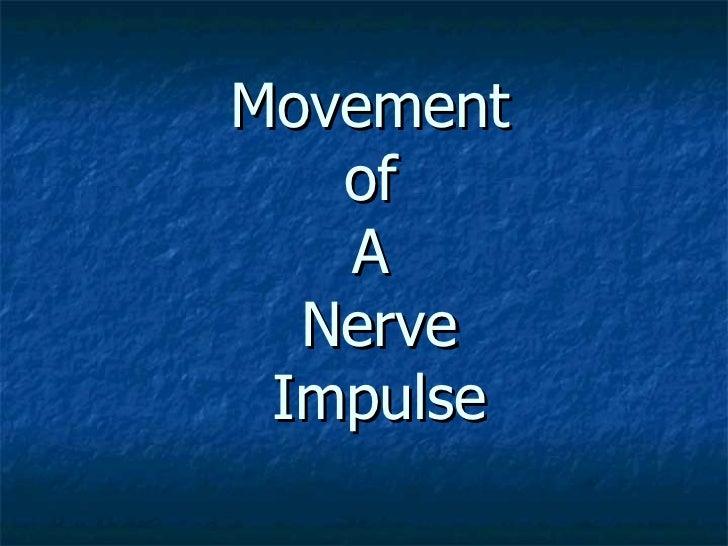Movement   of   A  Nerve Impulse