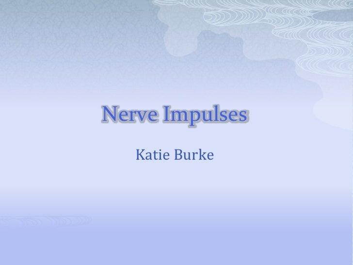 Nerve Impulses<br />Katie Burke<br />