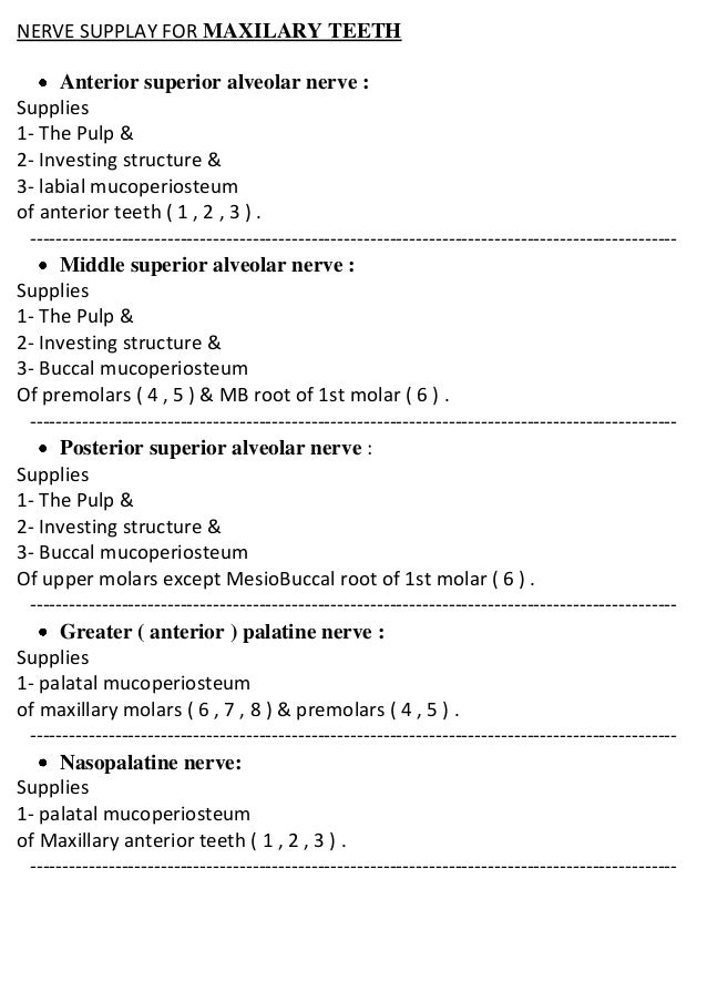 NERVE SUPPLAY FOR MAXILARY TEETH Anterior superior alveolar nerve : Supplies 1- The Pulp & 2- Investing structure & 3- lab...