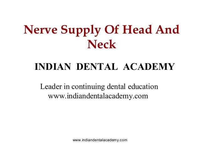 Nerve supply of head and neck  /certified fixed orthodontic courses by Indian dental academy
