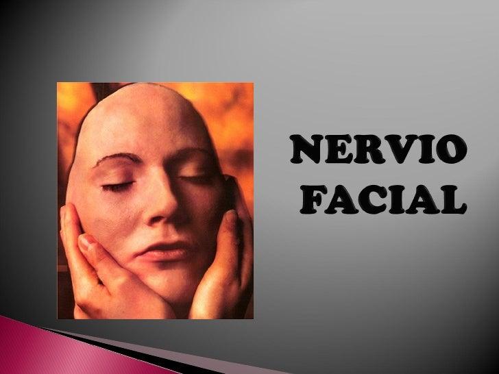    Origen real:     Núcleo motor: Músculos de la cara.     Núcleo gustativo: fibras conductoras    e sensaciones gustat...