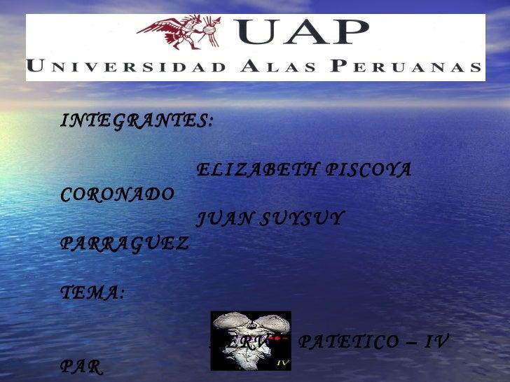 INTEGRANTES:            ELIZABETH PISCOYACORONADO            JUAN SUYSUYPARRAGUEZTEMA:            NERVIO PATETICO – IVPAR