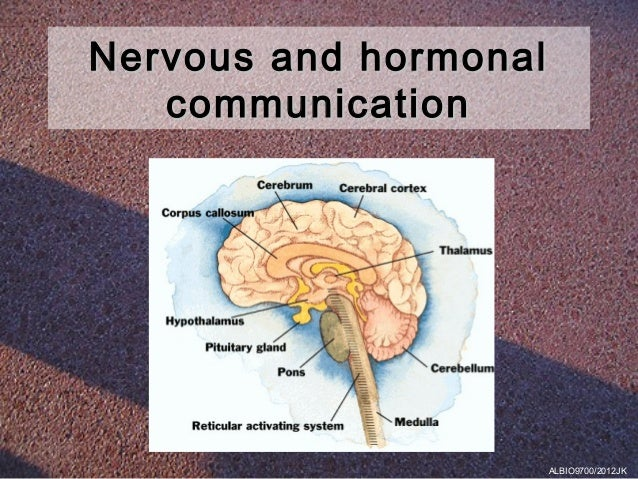 Nervous and hormonal   communication                       ALBIO9700/2012JK