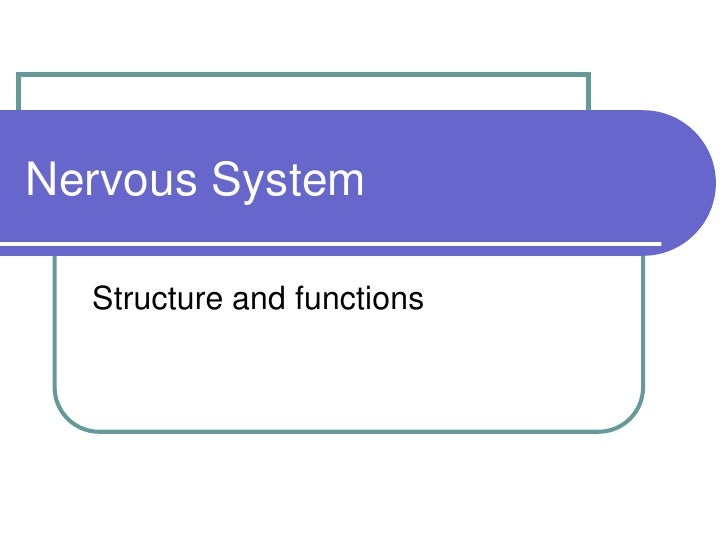 Nervous System<br />Structure and functions <br />