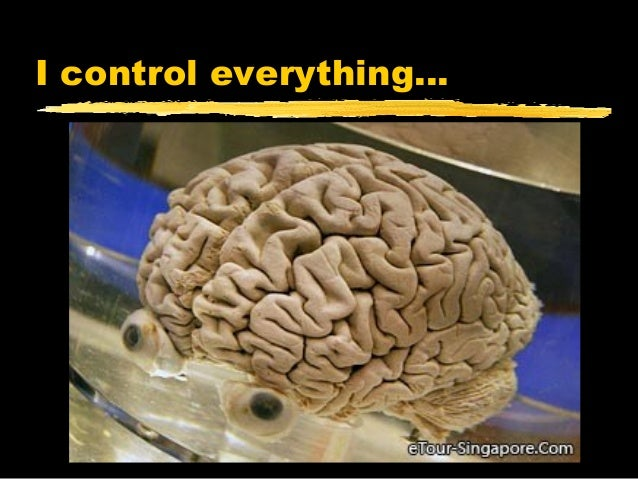 I control everything…