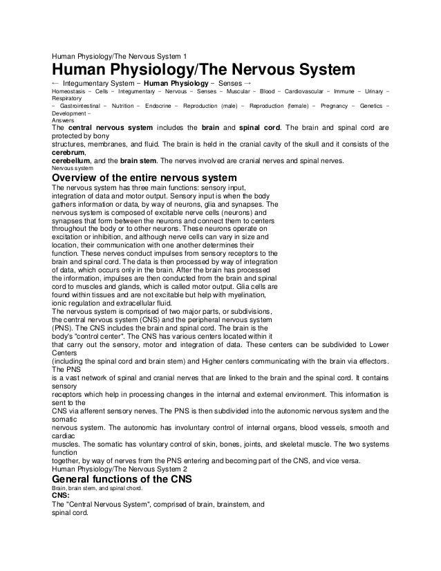 Human Physiology/The Nervous System 1 Human Physiology/The Nervous System ← Integumentary System — Human Physiology — Sens...