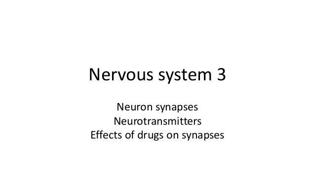 Nervous system 3 Neuron synapses Neurotransmitters Effects of drugs on synapses