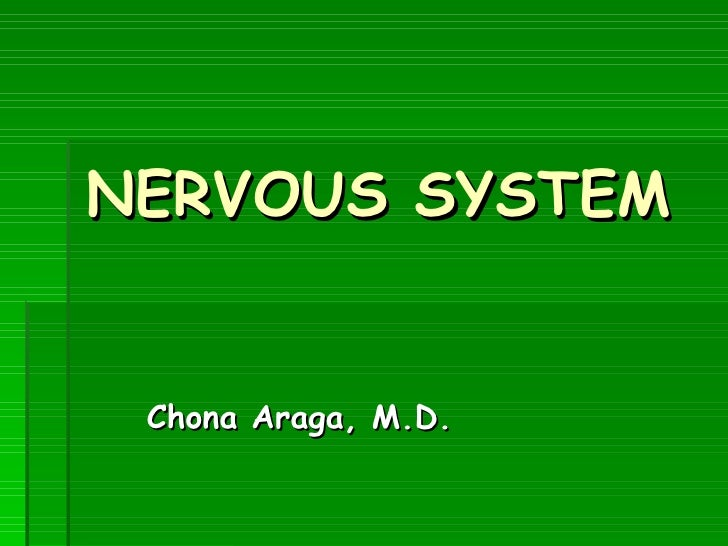 Nervous system gross (1)