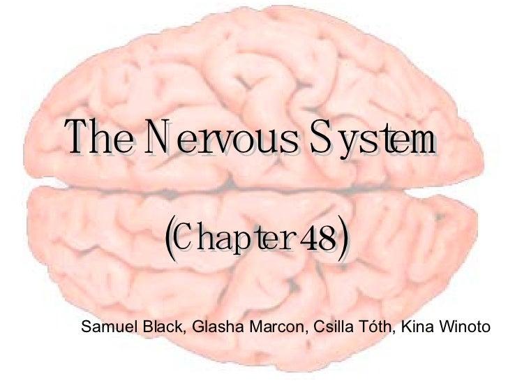 The Nervous System (Chapter 48) Samuel Black, Glasha Marcon, Csilla T óth, Kina Winoto