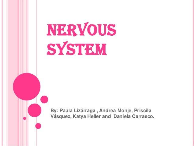 NERVOUS SYSTEM By: Paula Lizárraga , Andrea Monje, Priscila Vásquez, Katya Heller and Daniela Carrasco.