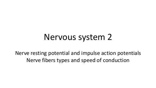Nervous tissue 2
