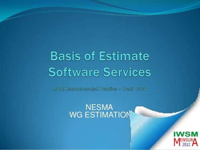 Basis of Estimate for IT Services