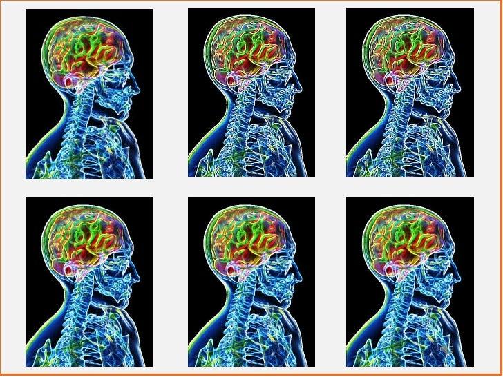 Welches Netzwerk ist für mich das Richtige?    Finden Sie Ihr passendes Netzwerk.           27.8.2012 – 31.8.2012         ...