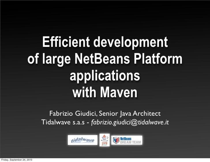 Efficient development                      of large NetBeans Platform                              applications           ...