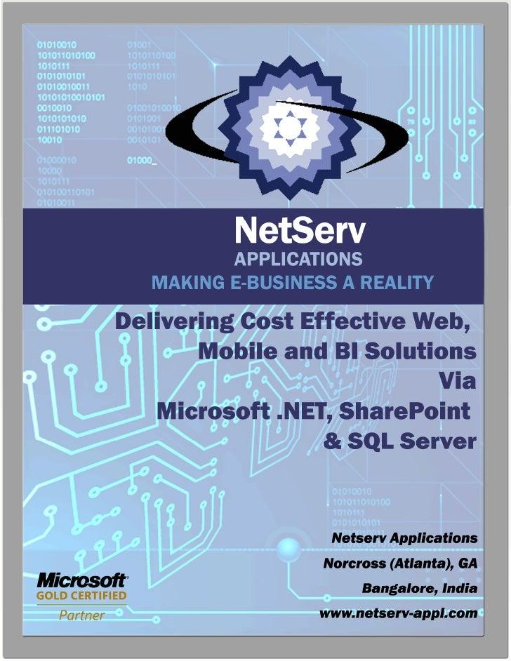 Net Serv