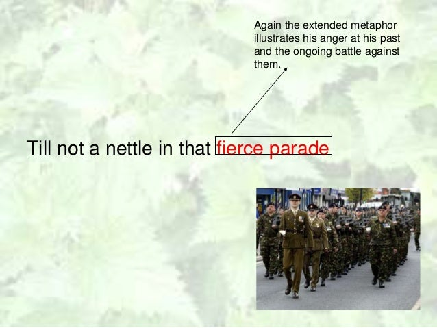 nettles poem analysis A beautifully hand-drawn, detailed analysis of 'nettles' - handy for a revision tool, group work or for classroom display a single page resource which forms part of.