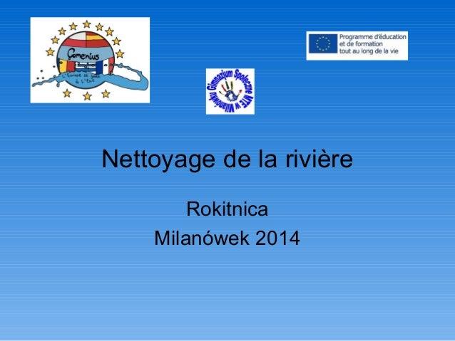 Nettoyage de la rivière Rokitnica Milanówek 2014