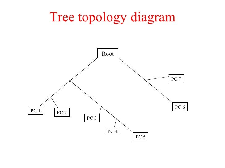 networking concepts       tree topology diagram