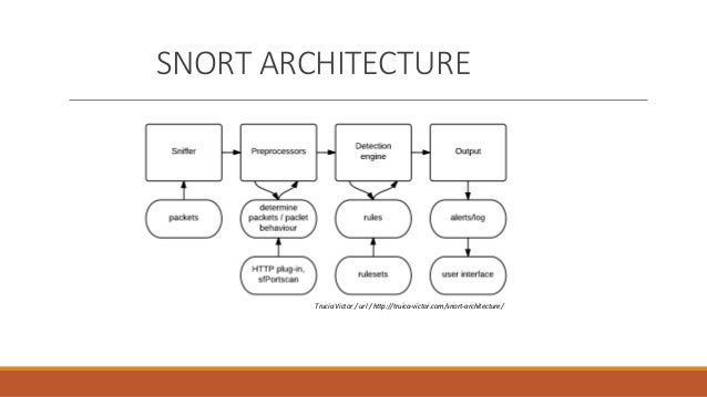 compare snort and bro ids Some leading intrusion detection systems (ids) products are • snort snort® is an open source network intrusion prevention and detection system (ids/ips) developed by.